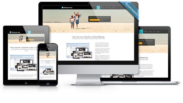 Responsive website Neosense Software